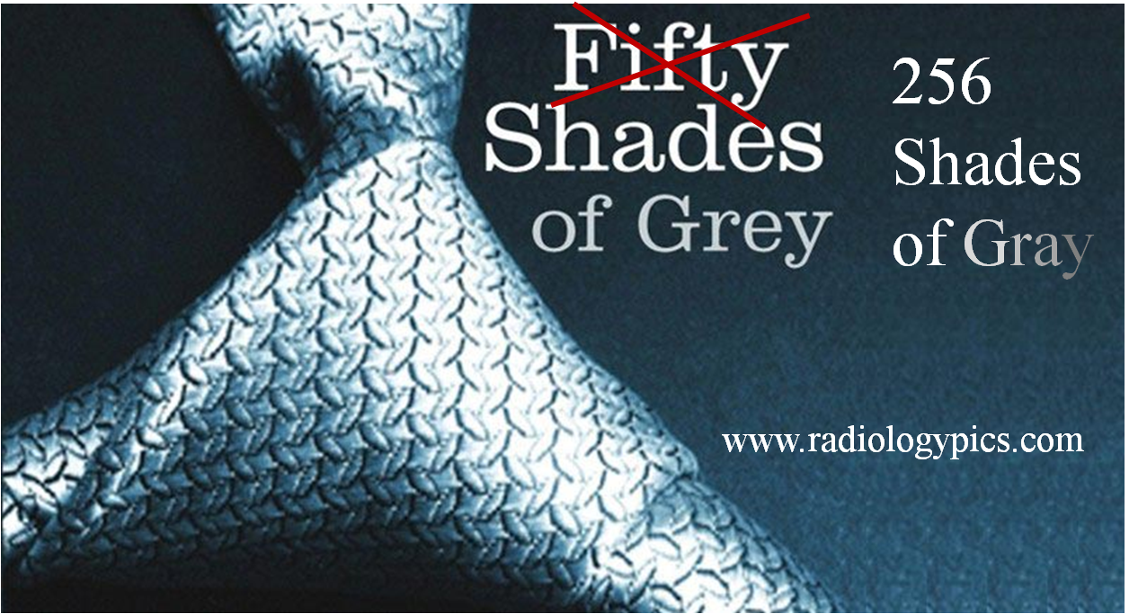 Pediatric radiology waiting room radiologypics com for Fifty shades od gray