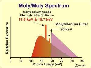 molymoly